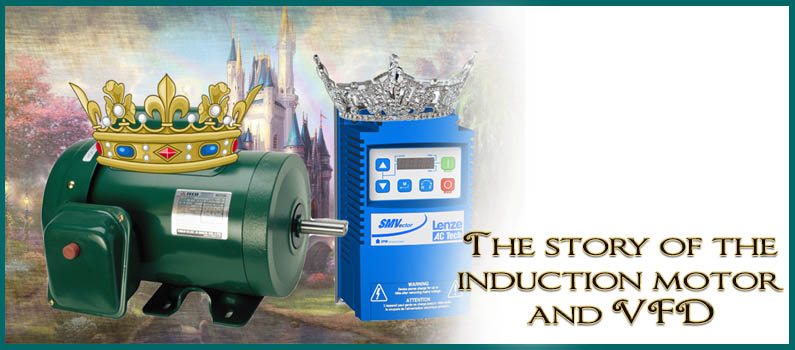 How did the VFD end up marrying the AC Induction Motor?