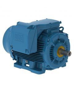 Motor, 300hp, 1200rpm, 3-Phase 460V, 586/7T