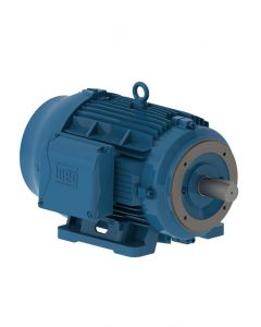 Motor, 3 Phase, 25hp, 1800rpm, C-Face, Foot Mnt